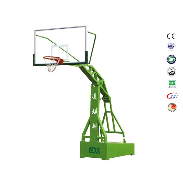 Official junior basketball goal post