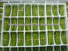 Green food, Individual quick frozen green beans bundle