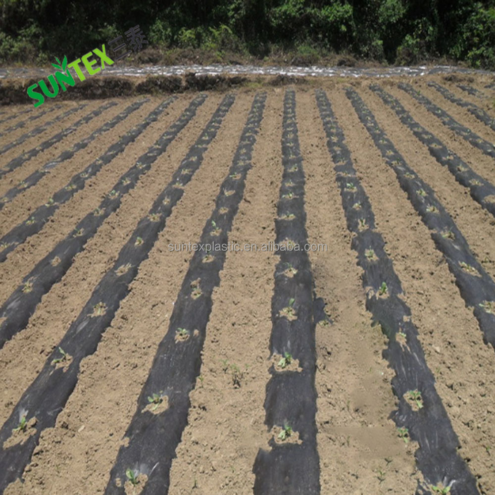 Agriculture keep soil moisture Polyethylene mulch film,black weed control landscaping mulch layer,1mil ground cover mulch sheet