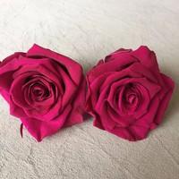 Buy Hot sale real natural preserved roses wholesale natural roses ...