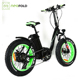 Professional 48v 500w Electric Bike Folding Bicycle Fat Tire