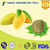 flavouring enhancer Mango Juice Powder Mango Juice Drink Powder