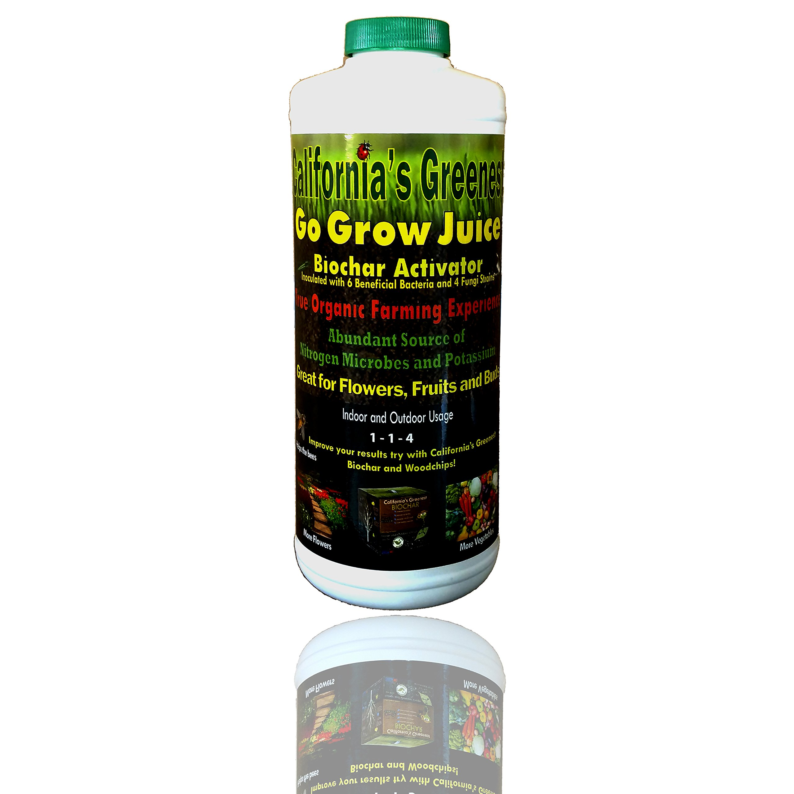 California's Greenest Go Grow Juice [BIOCHAR ACTIVATOR] - All Natural & Organic Botanical Plant Extract - Flowers, Leaves, Bark, Grass & Kelp/Seaweed Extract - All in One - Concentrated (1 QT)