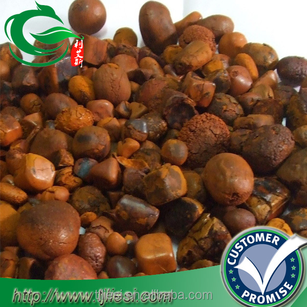 supply ox gallstones with low price