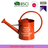 Garden and Home Metal Kids Watering Can /Water Can /Decorative Indoor Watering Can