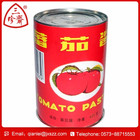 New corp canned tomato ketchup 28-30 tomato sauce/tomato ketchup/tomato puree