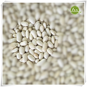 JSX All Variety Alubia Beans White Kidney Beans China Original