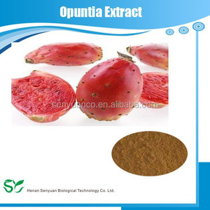 100% Natural Cactus plant Extract powder /Opuntia dillenii Haw extract