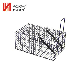 Galvanized Iron Folded Squirrel Cage Trap