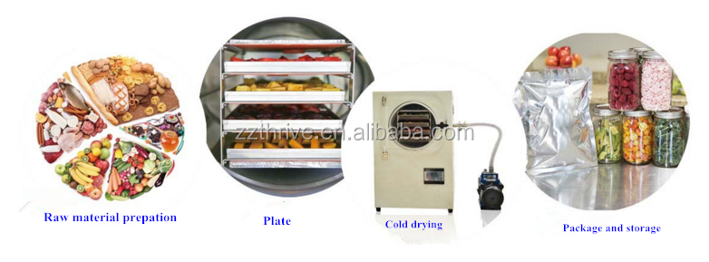 Quick mango freeze dry machine/water removal machine