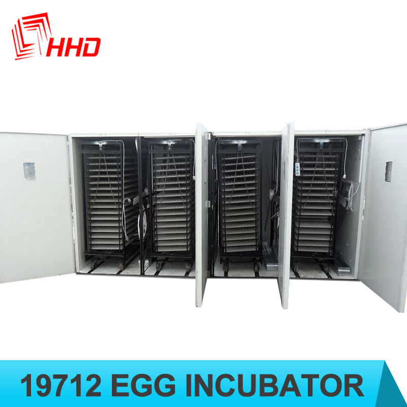 CE approved full automatic industrial fertilized chicken eggs 19712 eggs for sale fertile emu eggs for sale
