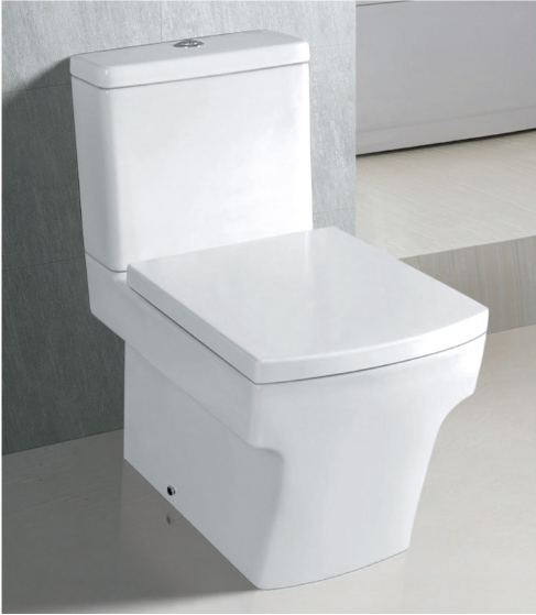 square shaped toilet seat. Square Shape Toilet Seat Suppliers And Breathtaking Shaped Gallery  Exterior Ideas 3D