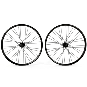 Cycling bicycle tubeless wheel rim with Rivet made in China