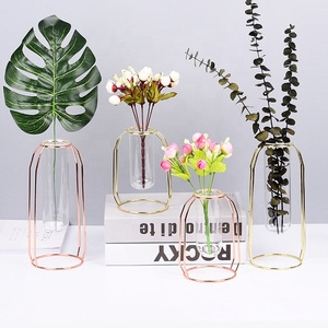 Decorative Glass Metal Transparent Glass Tube Minimalist Test Tube Vases