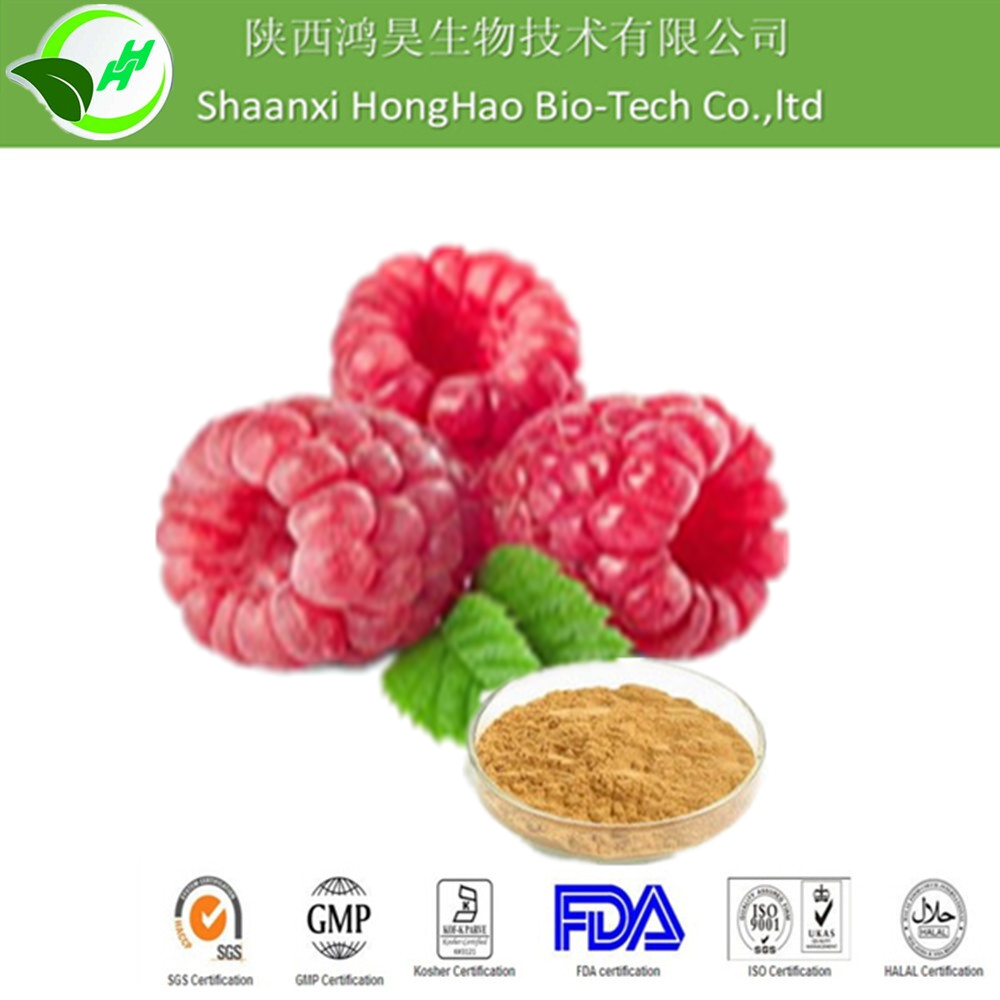 2016 Hot Sale shaanxi honghao herb 100% Raspberry extract