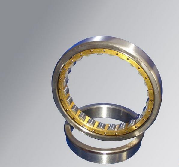 electric skateboard N2314E Bearing factory Cylindrical roller bearing
