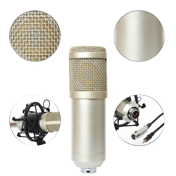 BM-800 Professional Studio Broadcasting Recording Condenser Microphone & NW-35 Adjustable Recording Microphone Suspension
