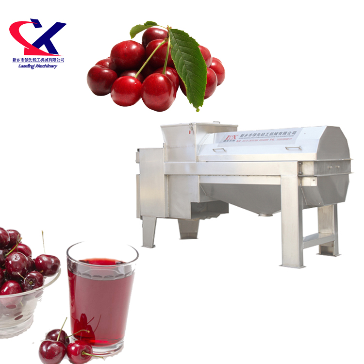 Cherry zaad Remover 3000 kg/u rvs Fruit Smash Machine