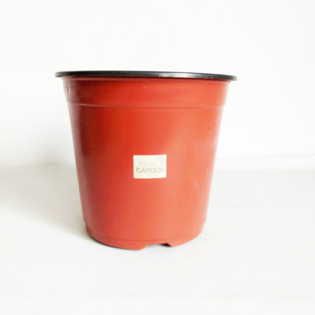 Peat Flower Pots Peat Flower Pots Suppliers And Manufacturers At