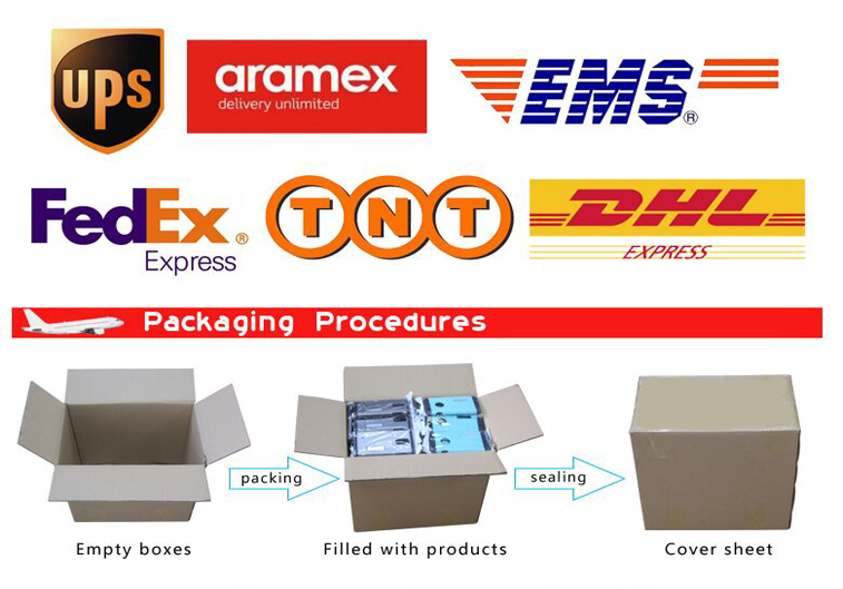 International express courier service to Singapore/Malaysia/Thailand/saudi arabia for makeup brush