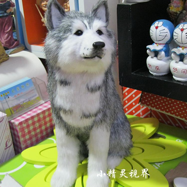 Husky Stuffed Animals Lookup Beforebuying