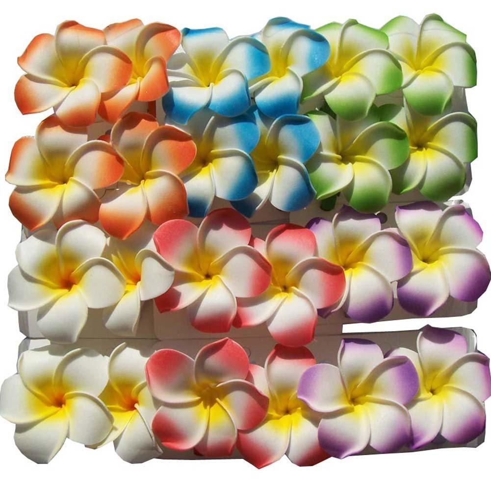 Cheap india hawaiian foam flower hair clips find india hawaiian get quotations set of 24 hawaiian hawaii bridal wedding party plumeria foam flower hair clips izmirmasajfo