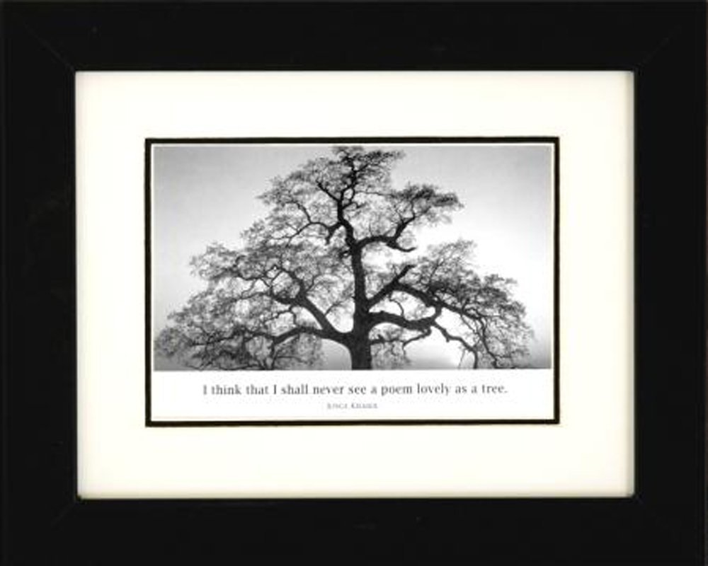 Professionally framed oak tree at sunset by ansel adams black white photograph 8x10 with quote