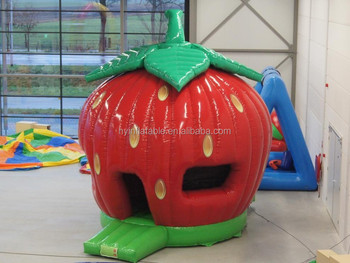 Nice Shape Small Indoor Strawberry Shortcake Inflatable Party ...