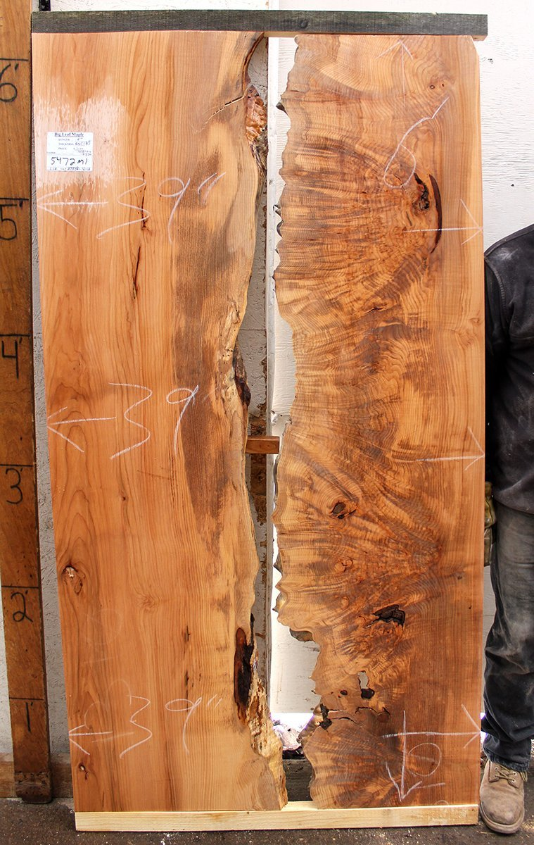 Figured Straight Edge River Table Natural Big Leaf Maple Wood Slab  Unfinished Unique Coffee Table Burly