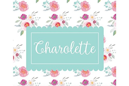 Personalized Baby Blanket, Baby Girl Gifts, Personalized Swaddle Blanket, Custom Baby Blanket, Crib or Toddler Blanket, Baby Blankie, Baby Blanket with Name All Over, Receiving (Charlotte)