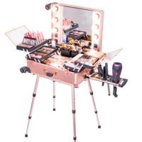 Professional Artist Makeup Case with Lights Aluminum Trolley Train Beauty Case with LED Mirror KC-210