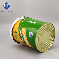 5G cylindrical tin pail with handle and cover packing paint and oil