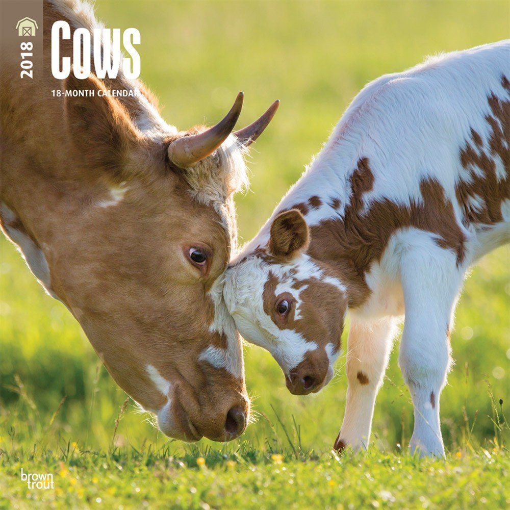 2018 Cows Wall Calendar 2018 DELUXE {jg} Best Holiday Gift Ideas - Great for mom, dad, sister, brother, grandparents, grandchildren, grandma, gay, lgbtq.