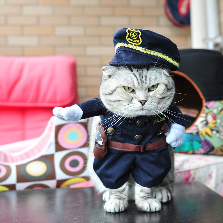 Funny Pet Costume Nurse Policeman Pirate Doctor Puppy Cat Christmas ...