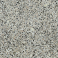HS-D058 18 x 26 granite tile,granite stone paint,granite wall stone design