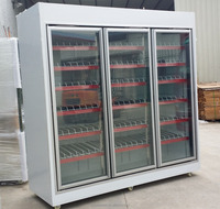 Upright Assembled Display Cabinet Used Supermarket Refrigerator/Freezer Showcase for Sale
