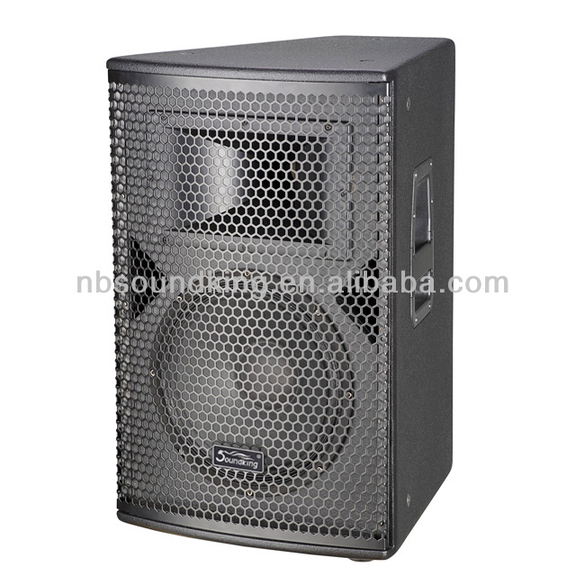 professional entertainment project Speaker KA12