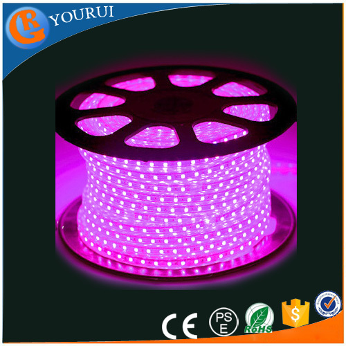 220V 5050 led neon flexible strip waterproof nano coating waterproof flexible 12v black light led strip bulk for cars