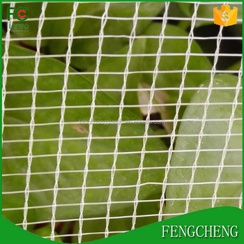 Agricultural Clear Hdpe Uv Anti Hail Nets Apple Trees Protection Netting Buy Fruit Tree Netting Hail Protection Net Hail Guard Net Product On
