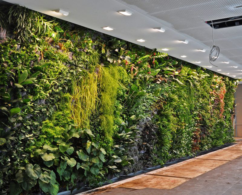 Ao ar livre parede verde artificial feita de samambaia for Muro verde artificial