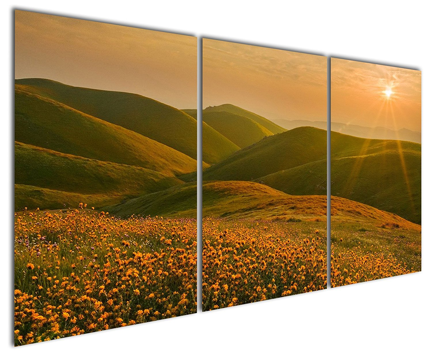 Gardenia Art - Yellow Flowers Daisy on Hillside at Sunrise Canvas Prints Modern Wall Art Paintings Mountain and Grassland Scenery Artwork for Room Decoration,16X24 inch,Stretched and Framed