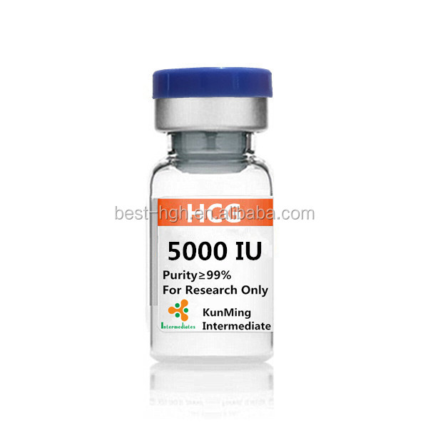 hcg powder 5000ui organic intermediates best quality HCG 5000iu each vial top peptides hcg