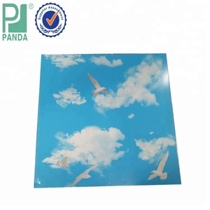 Philippines 60x60 Blue Sky Pvc Ceiling Panels Low Price
