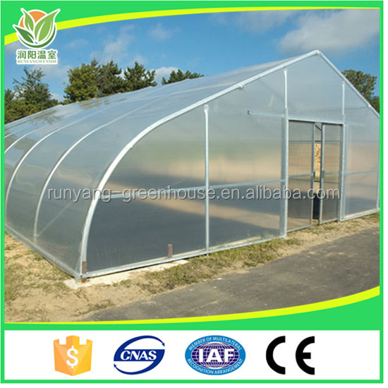 Commercial Low Cost Cucumber Tomato Mushroom 200 micron Greenhouse Film Galvanized Steel Frame Agriculture Greenhouse Structure