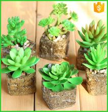 Promotion cactus artificiel acheter des cactus artificiel for Mini cactus artificiel