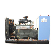 Buy direct from china factory natural gas mw generator