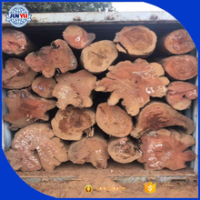 high great quality average 40cm and up Angola rosewood round logs
