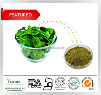 100% Natural Organic Vegetable Spinach Extract, Organic Spinach Extract powder wholesale