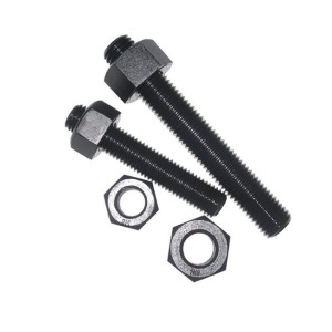 High Tensile Fastener nut and bolt, stainless steel roll bolt
