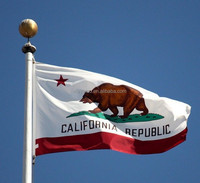 Customized Printing 3X5Ft Polyester Flying California State Flag